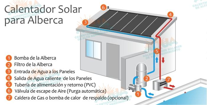 Calentador solar para albercas - Calentadores solares para piscinas ...
